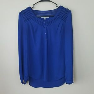 Daniel Rainn Blue Blouse